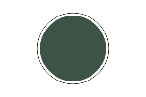 4807AP - Flat Russian Armor Green 20ml - akryl